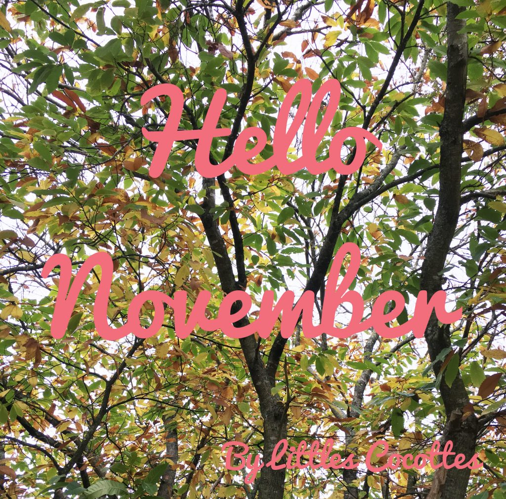 hello-november-ok